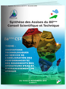 synthese djibouti2018 fr